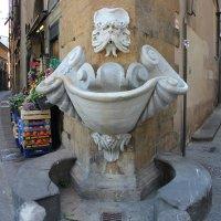 прогулка по Флоренции :: Ольга