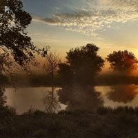 утро :: sergej-smv