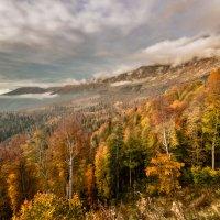 Осенний вечер в горах Апшеронского района :: Геннадий Клевцов