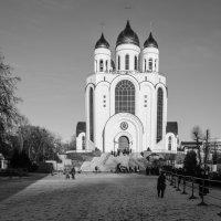 Кафедральный собор Христа Спасителя :: Kasatkin Vladislav