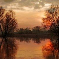 Апрельский закат :: sergej-smv