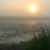 Тихого утра туманный рассвет :: Павлова Татьяна Павлова