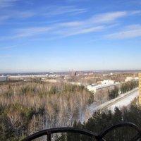 В один из зимних , солнечных дней . :: Мила Бовкун