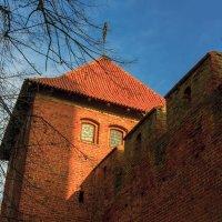 Башня замка :: Игорь Вишняков