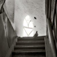 любовь и голуби :: Galina
