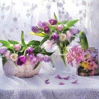 ..Тюльпаны весны с кружевами! :: Валентина Колова