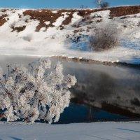 Цветы от Снежной Королевы...)) :: Владимир Хиль