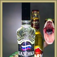 ************ :: Андрей Чиченин