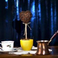 Кофейный цветок...? :: Константин Вавшко