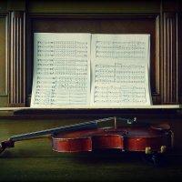 violin :: Lady Etoile