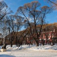 Райский сад. :: Валерий Молоток