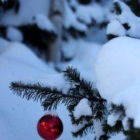 С Новым годом!!! :: Дмитрий Арсеньев