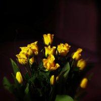 цветы :: Юлия Смирнова