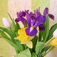 Весенний букет :: Анастасия Белякова