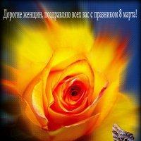 Дорогие женщин, поздравляю всех вас с празником 8 марта! Да будете всегда красивыми, здоровыми, счас :: AVETIS GHAZANCHYAN