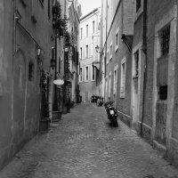 Rome :: Алексей Гудков