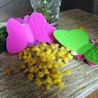 Собирающие цветочную пыльцу :: bemam *