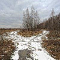 Последний снег :: Игорь Кожухов