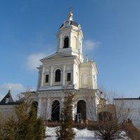 Башня с часами :: Svetlana27