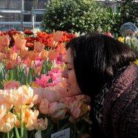 весна в Москве :: Екатерина Бессонова