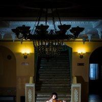 Скрипка :: Роман Жданов