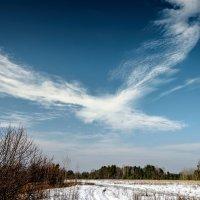Небесное создание :: Юрий Бичеров