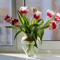 весна пришла :: юрий затонов