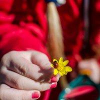 весна, весна :: Катерина Терновая