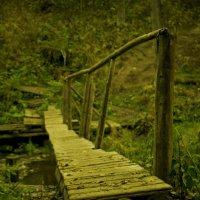 мост через ручей :: Леонид Веденин