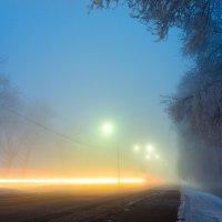 дорога в аэропорт :: Aleksandr Zubarev