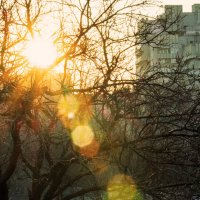 Луч солнца золотой :: Игорь Коваль