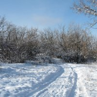 Зимняя дорога :: Natali