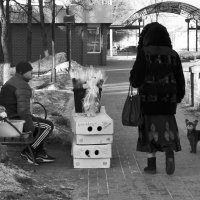 ...женский день... :: Ольга Нарышкова