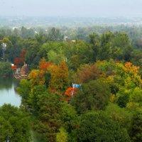 Осенний парк :: LORRA ***