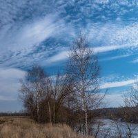 Весна в небе. :: Олег Козлов