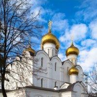 Купола Успенского собора под весенним небом :: Алла ************