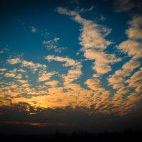 Весенний закат :: Оксана Ушанкова