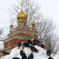 Собор и голуби :: Владимир Максимов