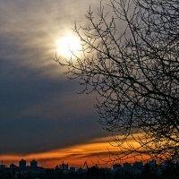 Зимнее солнце :: Yuriy Man