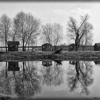 Ранняя весна :: Виктор Марченко