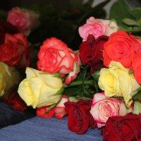 Букет роз :: Ирина Радуга