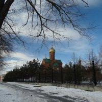 Храм святителя Василия Великого :: Натали Акшинцева