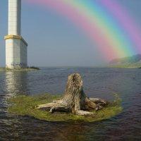 Мост, радуга и старый пень :: Сергей Шаврин