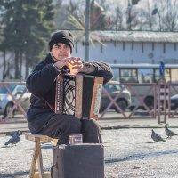 уличный музыкант :: Владимир Голиков