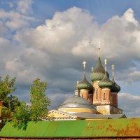 Полет стрижа :: Святец Вячеслав