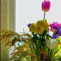 У окна :: Юрий Стародубцев