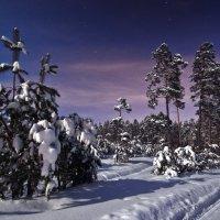 Ночькой лунной, да ночькой звездной :: Сергей