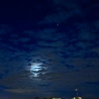 ночь,луна,звезда :: Елена