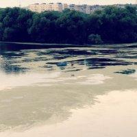 остров :: Дмитрий Потапов