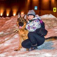Верный, красивый и лучший друг :: Денис Вишняков